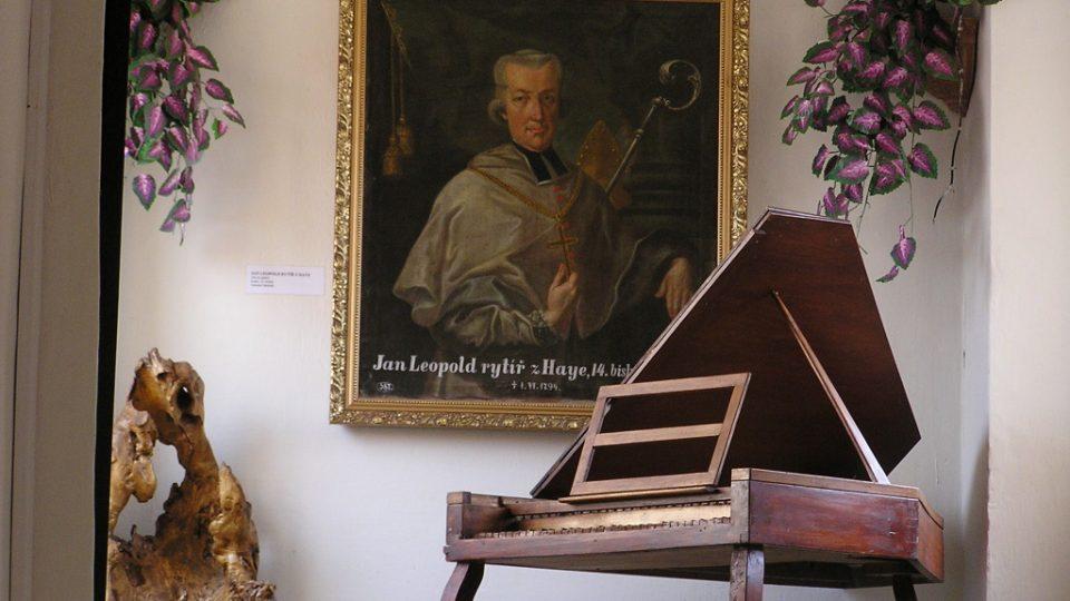 Hayův portrét v Městském muzeu v Chrasti