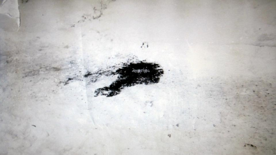Detail krve na sněhu