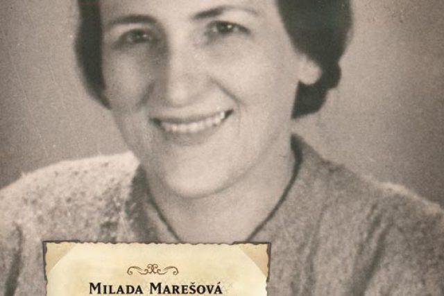 Obálka knihy Waldheimská idyla