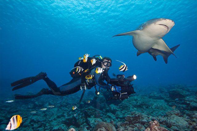 Libor Špaček a Petra Doležalová natáčejí a fotografují pod mořskou hladinou