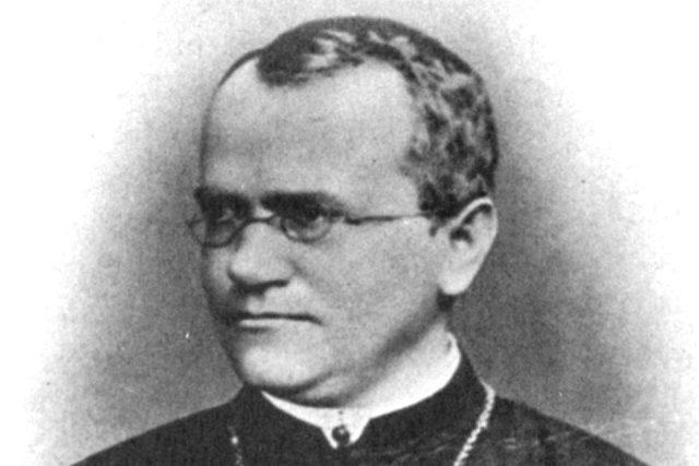 Johann Gregor Mendel   foto: Wikimedia Commons,  Public domain