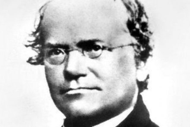 Gregor Johann Mendel   foto: Public domain