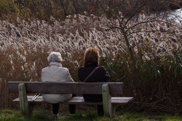 Důchodkyně na lavičce