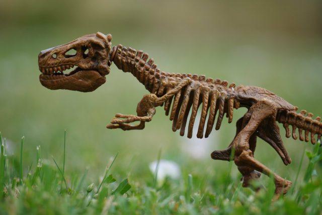 Vymřeme podobně jako dinosauři?