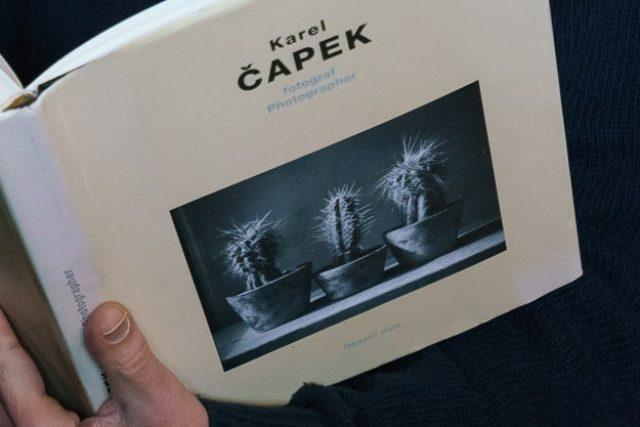 Že Karel Čapek miloval kaktusy, dosvědčují i jeho vlastní fotografie
