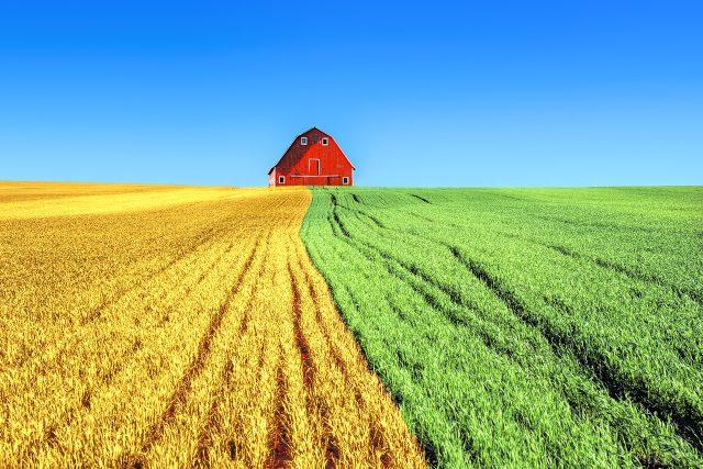 zemědělství; farma