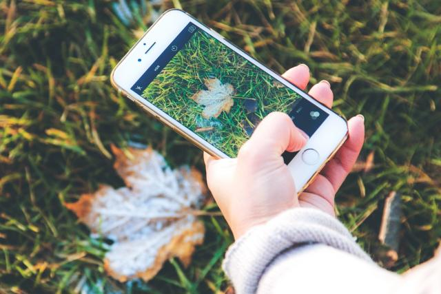 mobil, mráz