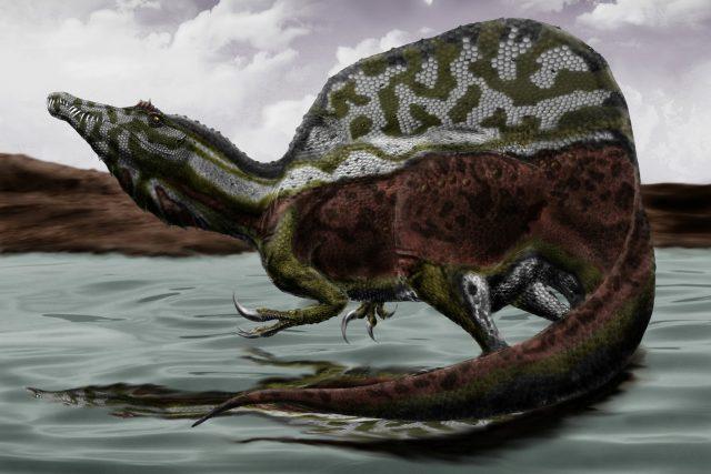 Takhle nějak možná mohl vypadat spinosaurus