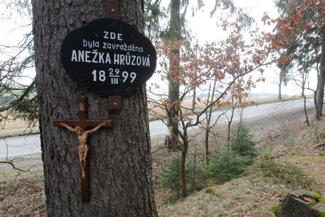Místo u Polné,  kde zemřela Anežka Hrůzová | foto: Profimedia