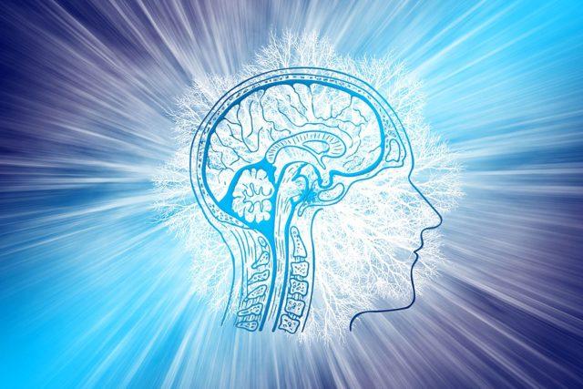 Expedice do nitra mozku | foto: Fotobanka Pixabay  (5008272)