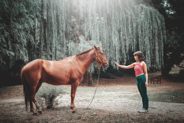 Kůň a žena
