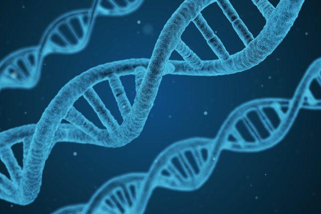 DNA - geny - genom | foto: Pixabay,  CC0 1.0